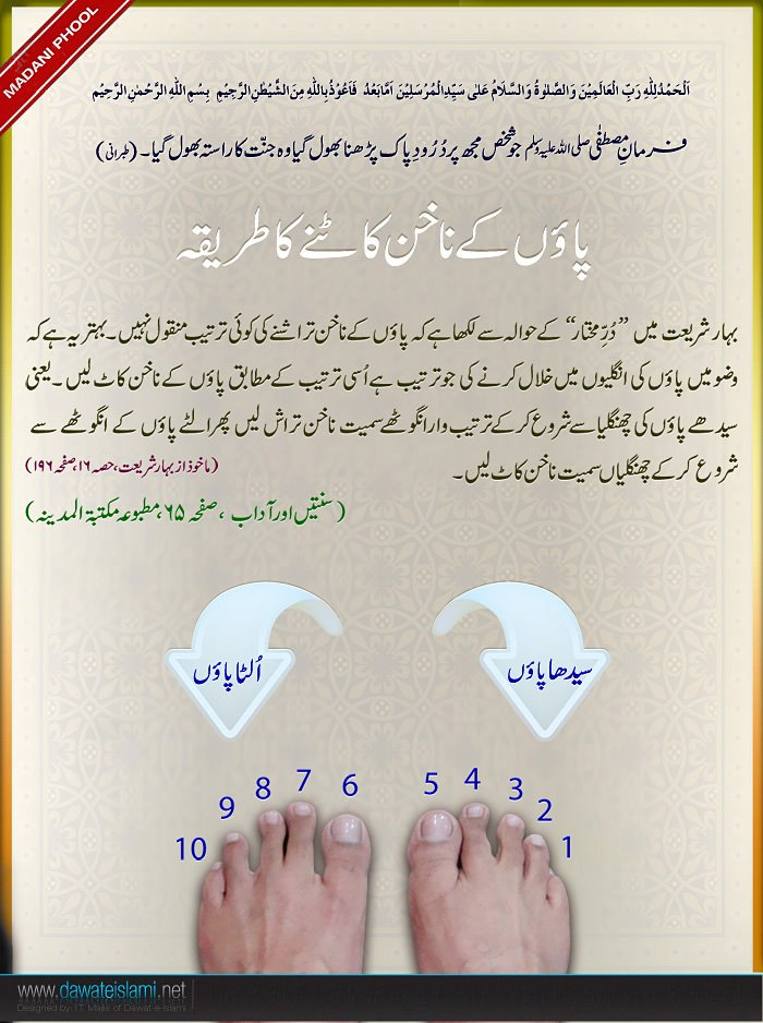 Sunnah About Cutting Nails of